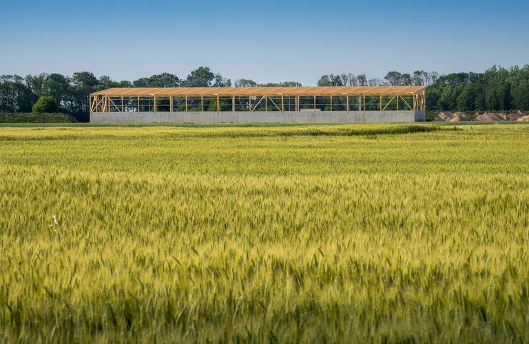 Holzhalle eingebettet in die Landschaft